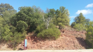 Land for sale in Nearest_Important_City1 sma11882