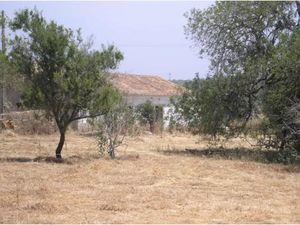 Land for sale in Guia vpa3989