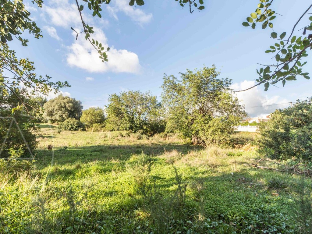 Land for sale in Nearest_Important_City1 sma10699