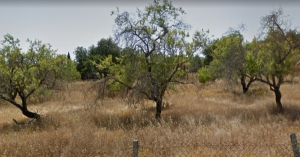 Land for sale in Nearest_Important_City1 sma13667