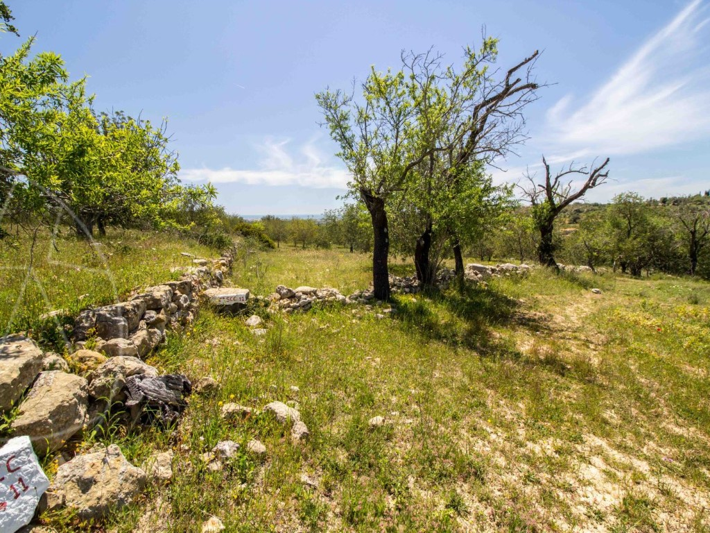 Rural Land for sale in Boliqueime sma9073